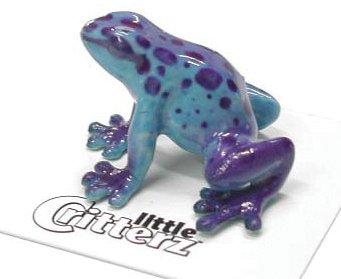 (Little Critters Sapphire Blue Dart Frog )