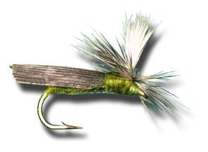 Parachute Caddis Olive - Parachute Caddis - Olive Fly Fishing Fly - Size 18 - 12 Pack