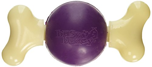 PetSafe Busy Buddy Bouncy Bone Dog Toy, Medium -