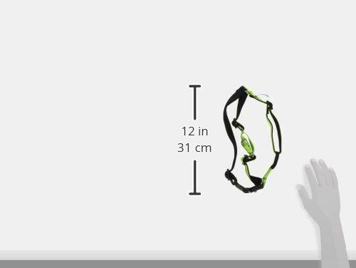 Amazon Com Petsafe Deluxe Easy Walk Harness Medium Apple Green