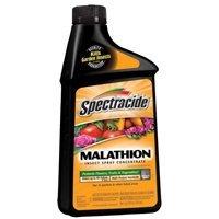 malathion-conc-16oz