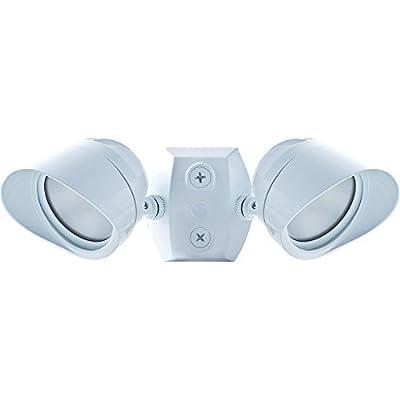 RAB Lighting BULLET2x12W Adjustable Two Lamp LED Floodlight, 12W, 120V, 5000K, White
