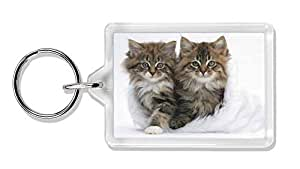 Gatitos en blanco Sombrero de piel Foto llavero animal de regalo llenador de la