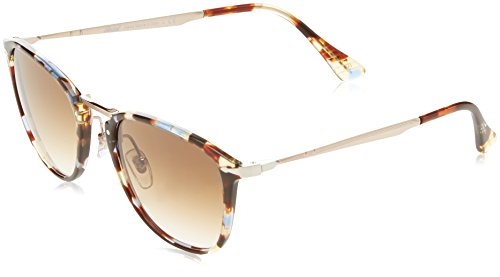 Persol PO3165S Sunglasses 105851-50 - Havana Azure Brown Frame, Clear Gradient - Persol Clear Frame
