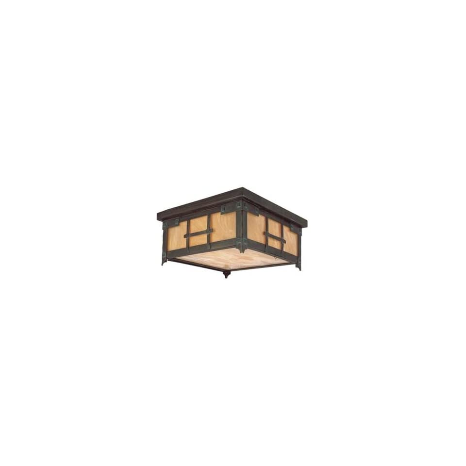 Oak Knoll Collection 14 Wide Outdoor Ceiling Light