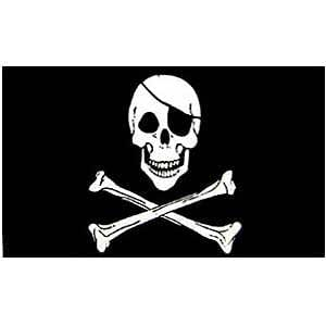 amazon   flag pirate jolly rogers poly 2ft x 3ft