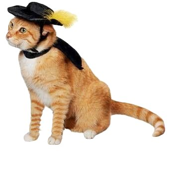 Ollypet Cat Halloween Costume For Small Dogs Pet Outfit Cute Fleece Hat and Collar Party Event Apparel Funny Clothes Accessory