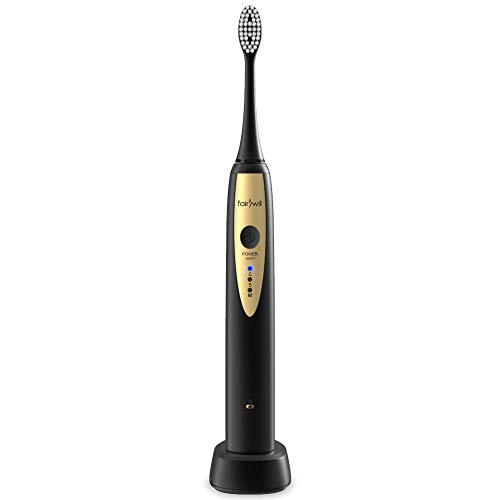 Sonic Electric Toothbrush Rechargeable Magnetic Suspension Motor & USB Wireless Charging Powerful Toothbrushes for Adult FW2081 Black by Fairywill
