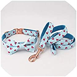 Cindy-Home pet leashes Dog Collar and Leash Set with Bow Tie for Big and Small Dog Cotton Fabric Collar Rose Gold Metal Buckle,Collar Bow Leash,S(20-30cm Length)