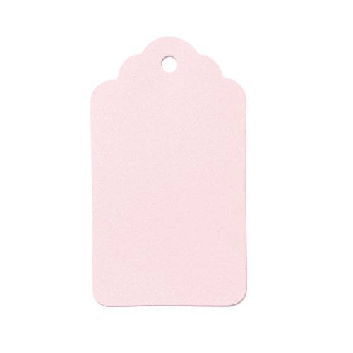 "LWR Crafts 100 Hang Tags Scalloped Top Rectangle with Jute Twines 100ft (2 3/4"" x 1 9/16"", Pink)"