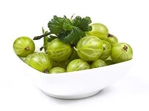 Fresh Frozen Organic Green Gooseberries (4.5 Lbs)