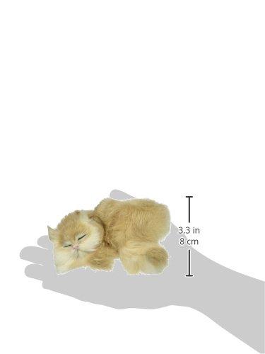 StealStreet C217T Cat Sleeping on Shelf Collectible Figurine Kitten Statue Decoration