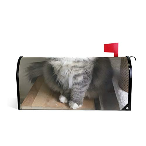 LAZEN Magnetic PVC Mailbox Cover Home Garden Decorations 25.4x20.78 inches Norwegian Forest Kitten