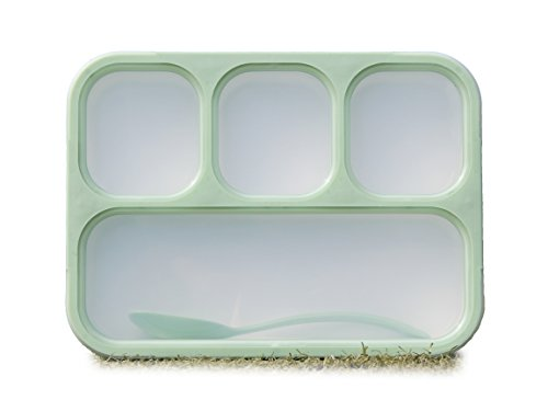 Lunch Box Bento Box - Fashion Rectangle Grid Lea-proof Food Container for Adults & Kids - 1000 ml 3 or 4 Compartments with a Spoon - BPA-free Microwave-safe Boxes (Green)