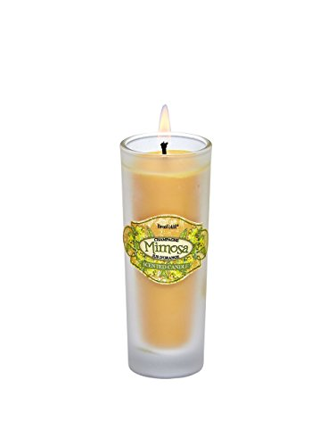 Deco Flair CDL6388 Shot Glass Candle, Mimosa