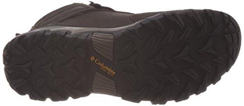 Columbia Newton Ridge Plus II Waterproof, Scarpe da Arrampicata Uomo, Multicolor (Cordovan/Squash), 47 EU