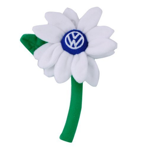 VW White Daisy Flower