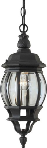 Forte Lighting 1702-01 Outdoor Pendant from the Exterior Lighting Collection, Black