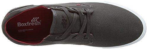 Boxfresh Stern - zapatillas de lona hombre gris - gris (gris)