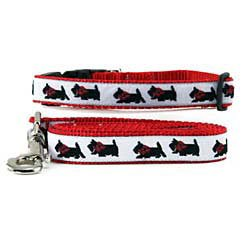 Terrier Collars Scottish (Scottish Terrier Collar & Leash)