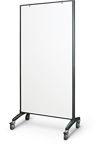 - Best-Rite 62406 Trek Mobile Double Sided Dry Erase Whiteboard Easel Room Divider, 65
