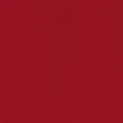 Bazzill Classic RED 12x12 Textured Cardstock | 80 lb Red Scrapbook Paper | Premium Card Making and Paper Crafting Supplies | 25 Sheets per Pack ()