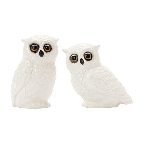Owl Salt Pepper Shaker Collectibles