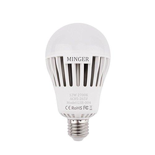 100 Watt Outdoor Light Bulb - 9