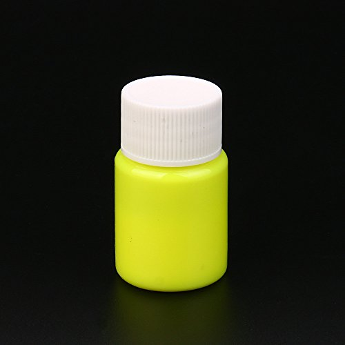 WensLTD Clearance! Glow in The Dark Acrylic Luminous Paint Bright Pigment Party Decoration DIY (E) ()