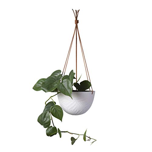(Hanging Planter Ceramic 7 Inch with 1 Metre Rope - in Charcoal or White for Indoor or Outdoor Plants - Unglazed - by Cantina (White) )