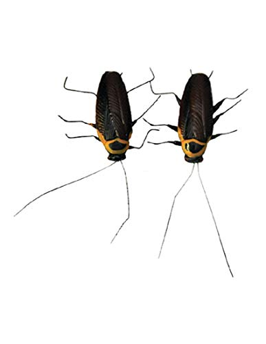 Sunstar 2 Pack Of Plastic Magnetic Cockroach Bugs Joke Gag Halloween Decoration Prop