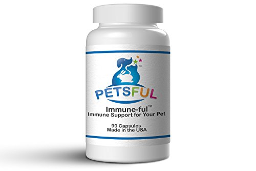 Premium Pet Immune Support Vitamin - Safe & Natural Supplement for Overall Health - Digestion, Skin & Coat, Joints - For Dogs, Cats, and All Pets - Large and Small - Made in USA!