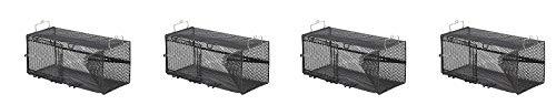Frabill Minnow Trap, 8 x 8 x 18-Inch, Black (4-(Pack))