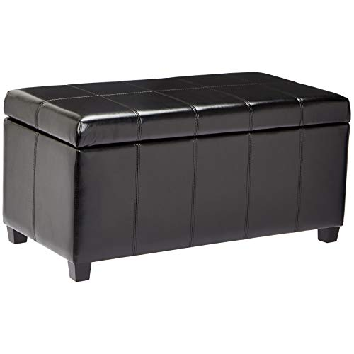 First Hill Damara Lift-Top Storage Ottoman Bench with Faux-Leather Upholstery, Jet Black ()