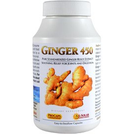 Ginger-450 360 Capsules by Andrew Lessman