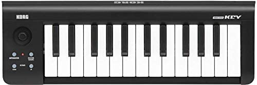Korg Microkey 25 Keyboard: Amazon ae