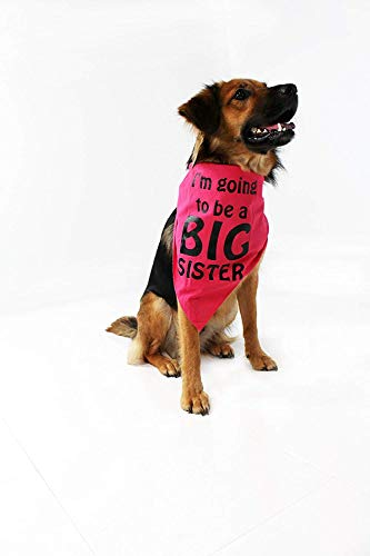 Midlee I'm Going to be a Big Sister Dog Bandana (Large) (Going To Be A Big Sister Dog Shirt)