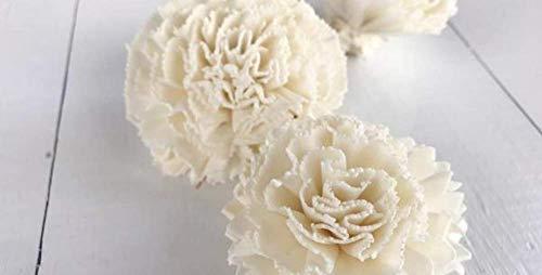 Sola Wood Flowers - 1.5