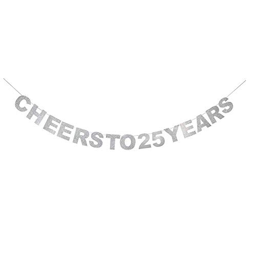 Cheer To 25 Years Banner -Happy 25 Years Old Birthday Party 25th Anniversary Party Decoration Bunting Silver (Decorations Anniversary 25th)