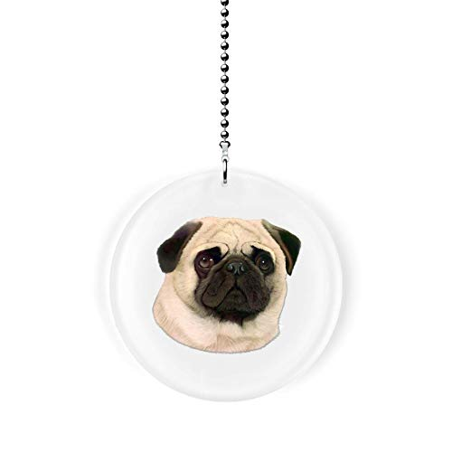 - Pug Portrait Fan/Light Pull