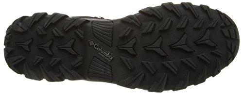Columbia Newton Ridge Plus II Waterproof, Scarpe da Arrampicata Uomo Multicolor (Black/Black)