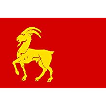 magFlags Bandera Large Boxmeer vlag   Gemeente Boxmeer, Noord-Brabant   bandera paisaje   1.35m²   90x150cm