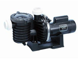 Pentair Sta-Rite P6RA6F-206L Max-E-Pro Standard Efficiency Single Speed Up Rated Pool and Spa Pump, 1-1/2 HP, 115/230-Volt by Pentair