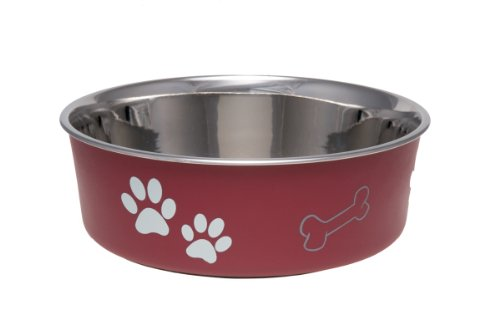 Loving Pets Bella Bowl for Dogs, Medium, Merlot