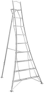 Henchman GWF300 Escalera de trípode, 3 metros: Amazon.es: Bricolaje y herramientas