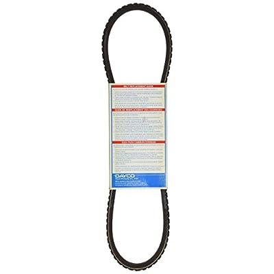 Dayco 17313 V-Belt: Automotive