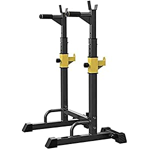 NEWWF Barbell Rack Squat Stand Adjustable Bench Press Rack 250KG Max Load Multi-Function Weight Lifting Home Gym Fitness Home Indoor Strength Training