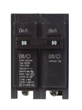 Double Pole Circuit Breaker (BR250)
