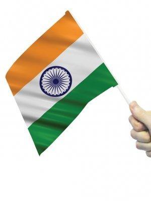 flagstobuy–Petit Indien agitant drapeaux avec bâtonnets