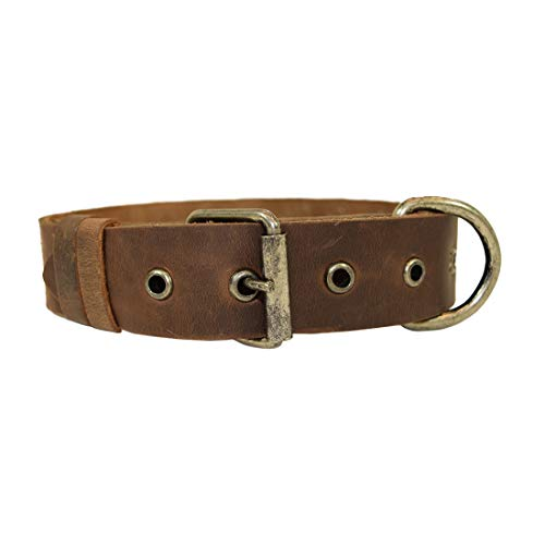 Bones Leather Dog Collar - Hide&Drink, Rustic Thick Leather Bones Design Dog Collar for Medium Size Dog (15 to 21 Inches) Handmade Includes 101 Year Warranty :: Bourbon Brown